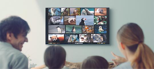 Android TV™ ile yeni dünyaları keşfedin