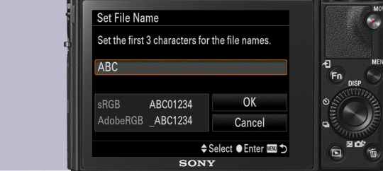 Установки имени файла